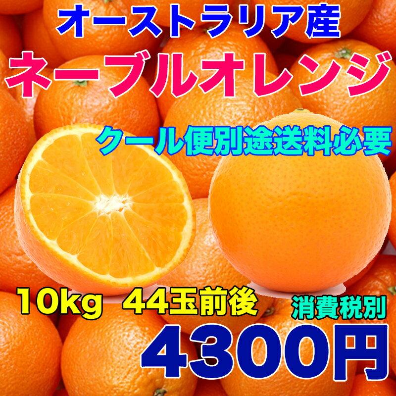 オーストラリア産 ネーブルオレンジ 約10kg 糖度保証 44玉前後 クール便別途送料必要※北海道・沖縄県離島は除く【RCP】