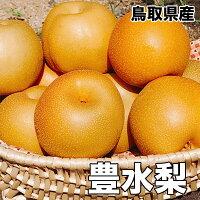 鳥取県産豊水梨