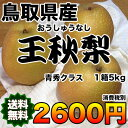 【送料無料】鳥取県産王秋梨 約5kg 青秀クラス 【RCP】