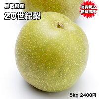 鳥取県産20世紀梨「わけあり」