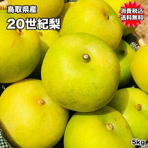 鳥取県産 20世紀 梨 5kg 10〜20玉 訳あり お試し用 送料無料 なし 梨 鳥取 20世紀 訳あり 梨 わけあり 敬老の日 ギフト