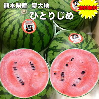 熊本県産ひとりじめ西瓜光糖度センサー