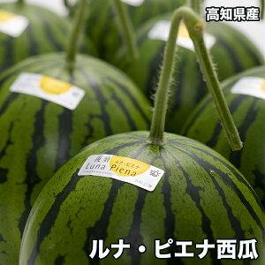 送料無料 高知県産 ルナピエナ 西瓜 約1.5kg以上 夜空 ギフト すいか スイカ