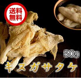 乾燥竹笙 キヌガサタケ 50g 約50本 博士ちゃん