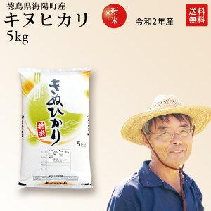 新米 令和元年産 徳島県産 キヌヒカリ 5kg 生産者:丸岡佳宏さん【smtb-KD】【HLS_DU】