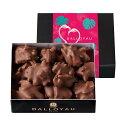ダロワイヨ バレンタイン ギフト チョコレートロッシェ アマンド レ[ チョコレート アーモンド ]2月8日以降バレンタイ…