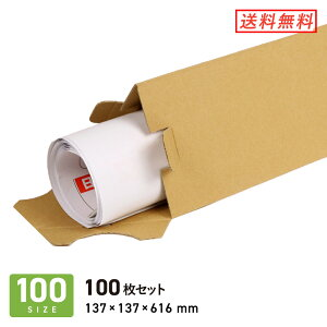ダンボール (段ボール箱) ポスター用三角ケース(A1・A2サイズ兼用) 宅配100サイズ 【137 × 137 × 深さ 616 mm】 100枚セット