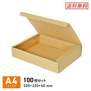 フリーボックス(底面A4・深さ6cm) 100枚セット