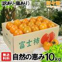 愛媛県産 富士柿 自然の恵み 10kg (訳あり・傷あり)