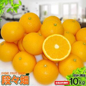愛媛県産 清見 自然の恵み(傷あり・訳あり)10kg