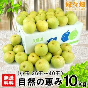 幸水梨 自然の恵み10kg(小玉)