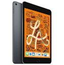 Apple iPad mini5 7.9インチ wi-fi 256GB ゴールド