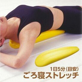 肩甲骨ダイエットに背中バランスダイエット 送料無料♪★特集形状のウレタン素材マットの上に仰向けになって寝るだけ♪