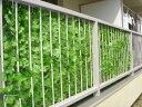 目隠しグリーンフェンス 1m×3m★ライトグリーン★   グリーンカーテン 緑のカーテン ベランダ テラス 外壁 日差し …