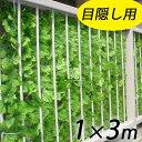 目隠しグリーンフェンス 1m×3m 2枚組  ★ライトグリーン★   グリーンカーテン 緑のカーテン ベランダ テラス …