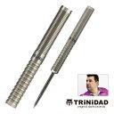 予約 ダーツ バレル トリニダード プロ ホセ2 TRiNiDAD PRO JOSE type 2 ホセ・デ・ソウサ選手モデル 2BA Steel