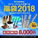 【数量限定】ダーツ セット 2018年 TRiNiDAD X バレルが選べる 夏の福袋 8,000円 フライト ダーツケース (ポスト便不可)