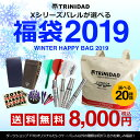 【数量限定】ダーツ セット 2019年 TRiNiDAD X バレルが選べる 年末 新春 福袋 カレンダー付き (メール便不可)