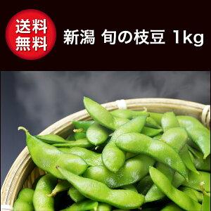 枝豆 1kg 新潟 枝豆 産地直送 収穫期により えだまめ 茶豆 あま茶豆 など一番の旬を 御中元 贈答 のし対応(熨斗) 送料無料 おつまみ