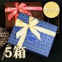 (計5箱セット+板チョコバッグ6袋+デジレーのミニチョコBOX4箱)ショコラ王国ベルギーの傑作 百貨店で売切続出バレンタ…