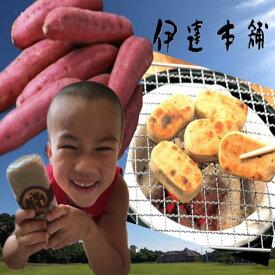 さつまいも かんころ餅 自然食品  餅菓子 長崎郷土菓子  干しいも スイーツ 5本入り 【配送はレターパックのみ】
