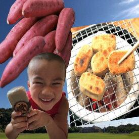 さつまいも かんころ餅 懐かしい味 自然食品  餅菓子 長崎郷土菓子  干しいも スイーツ 5本セット【配送はレターパックのみ】