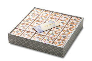 10000円+税【本州送料無料】餅入りもなか 『館最中』50個詰化粧箱 【楽ギフ_包装】