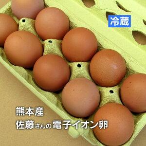 元気な鶏をヒナから育てる! 熊本産 佐藤さんの「 電子イオン卵 10個入り 」 衛生管理・環境も万全 【 野菜セット同梱で送料無料 熊本 九州 卵 たまご 玉子 鶏     生 卵かけご飯 】