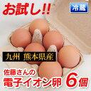 お試し小パック!元気な鶏をヒナから育てる!九州熊本産 佐藤さんの「電子イオン卵 6個入り」 衛生管理・環境も万全 …