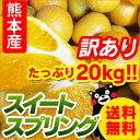 【 送料無料 】熊本産 訳あり スイートスプリング 20kg 【 みかん 柑橘 完熟 九州 熊本 】