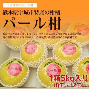 【 送料無料 】熊本産 パール柑 文旦 5kg(8〜12玉)【 贈答用 ギフト 贈り物 柑橘 みかん 九州 熊本 】