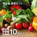 【 送料無料 】レビュー件数7,500件超!当店人気No.1☆ 九州 熊本産 定番旬野菜 10品以上保証 たっぷり くまもと野菜…