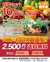 【 定期購入 】【 送料無料 】九州 熊本産 定番旬野菜 10品以上保証 たっぷり くまもと野菜セット 【 九州 熊本 野菜 …