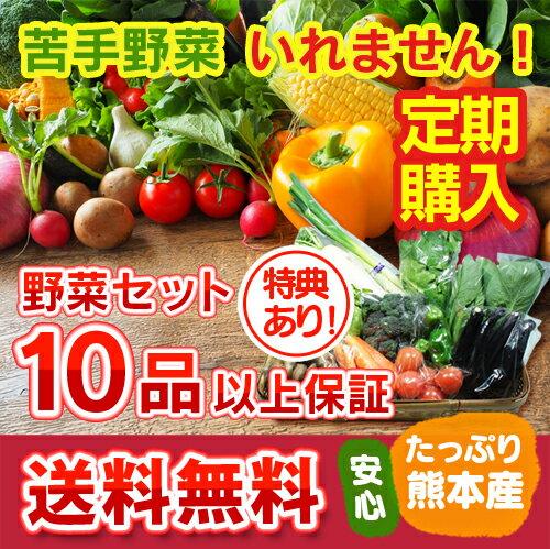 【定期購入】 レビュー件数5,800件超!ランキング1位獲得の九州 熊本産 定番野菜大盛 たっぷり くまもと野菜セット