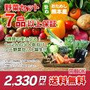 【 送料無料 】 九州 熊本産 定番旬野菜 7品以上保証 安心 くまもと ミニ 野菜セット 【 九州 熊本 野菜 セット 詰め…