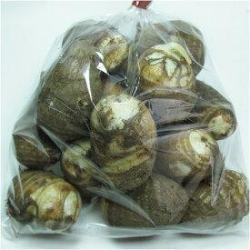 熊本産 里芋 1袋 500〜700g 【 野菜セットと同梱で送料無料 九州 熊本 野菜 さといも サトイモ 芋 根菜 煮 】