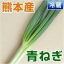 ■熊本県産 青ねぎ■ (熊本産) 1袋 【野菜セット同梱で送料無料】【九州 野菜】【青葱】【ネギ】