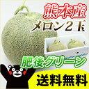 ■熊本産 メロン■ ≪肥後グリーン≫ 2玉 【ギフト】 【 九州 熊本 】【 送料無料 】【 melon 】【 父の日 】