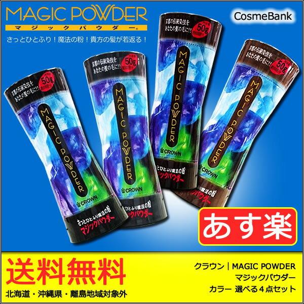 【送料無料|あす楽対応】マジックパウダー50g【 選べる4点セット|5種類からご自由に選択OK! 】【薄毛隠し/薄毛カバー/男性or女性用/MAGIC POWDER】