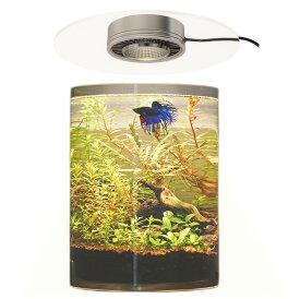 ボトルアクアリウム ボトルテラリウムLED 高演色 アクアリウム照明 テラリウム照明 ライト 植物育成LED 植物育成