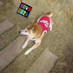 ランニングタイプ(小型犬用)【犬の服2点購入でメール便送料無料】ドッグウェア