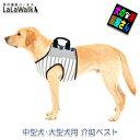 犬 LaLaWalk介助ベスト ボーダーカットソー(グレー×ボーダー)中型犬、大型犬用介護用品 歩行補助ハーネス ララウォ…