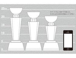 【名入れ無料】【送料無料】クリスタルトロフィーCR-4B(中)記念品大会記念スポーツ大会優勝ゴルフコンペオリジナル社内表彰彫刻無料!