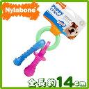 USA直輸入☆ Nylabone ナイラボーン パピーティージング パサファイヤー 全長約14cm 噛むおもちゃ パピー用 犬用おもちゃ