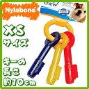 USA直輸入☆ Nylabone ナイラボーン パピーティージングキー XSサイズ 【犬のおもちゃ 噛むおもちゃ パピー用 犬用おもちゃ】