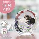 【今なら10%OFF】ペット 位牌 セレクトクリスタル ミニ ペット位牌カラー かわいい ペット仏具 写真彫刻 ペット供養 …