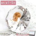 ペット 位牌 きらきら ダイヤカット クリスタル ペット位牌カラー かわいい ペット仏具 写真彫刻 ペット供養 ガラス …