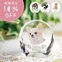 【今なら10%OFF】ペット 位牌 セレクト クリスタル ラージ ペット位牌カラー かわいい ペット仏具 写真彫刻 ペット供…
