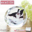 【ペット位牌】ラウンド型の小ぶりな位牌 DP-3ペットメモリアル ペット供養 犬 猫 うさぎ 小動物 ガラス かわいい き…
