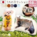 メモリアルクッション L 40cmサイズ ペット メモリアルグッズペット供養 かわいい クッション オーダー グッズ 犬 猫 …